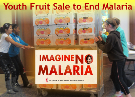 Youth Fruit Sale to End Malaria